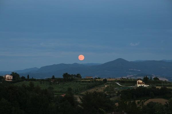 Agriresidence-Vista-Mare-Toscane (2)