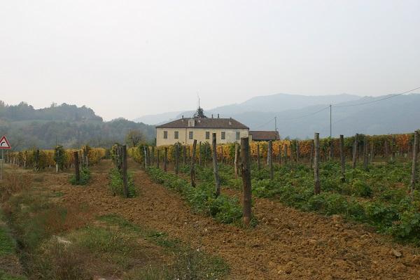 Cavallero-Vini-wijn-proeven-Piemonte (5)
