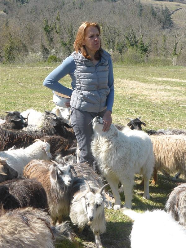 Chianti-Cashmere-geiten-kasjmier-Toscane (11)