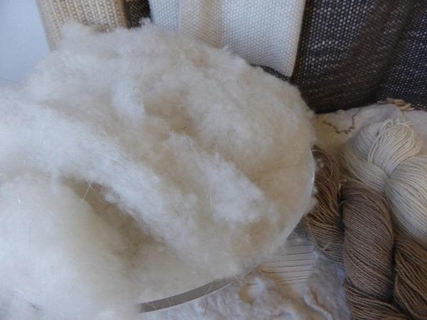 Chianti-Cashmere-geiten-kasjmier-Toscane (36b)