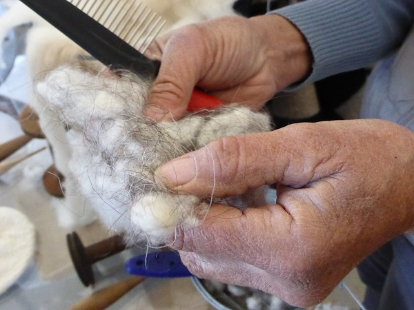 Chianti-Cashmere-geiten-kasjmier-Toscane (36c)