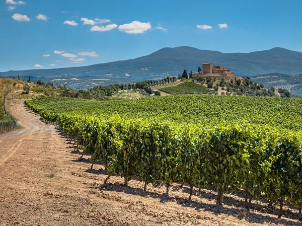 Chianti-wijn-proeven-tips-Toscane