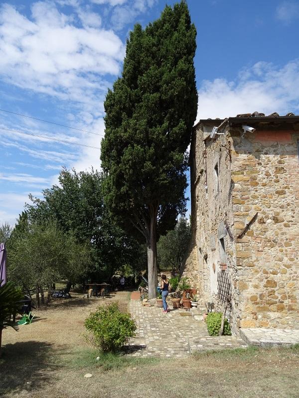 Fattoria-di-Montefiridolfi-wijn-Chianti-Toscane (2)