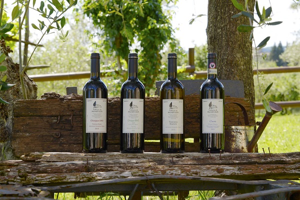 Fattoria-di-Montefiridolfi-wijn-Chianti-Toscane (21)