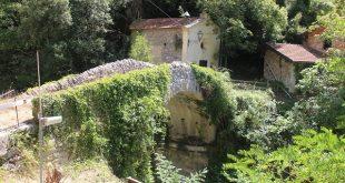 Pigna-Liguria-Holiday-Homes (22)