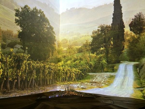 Torre-Campitelli-San-Gimignano-Toscane (7)