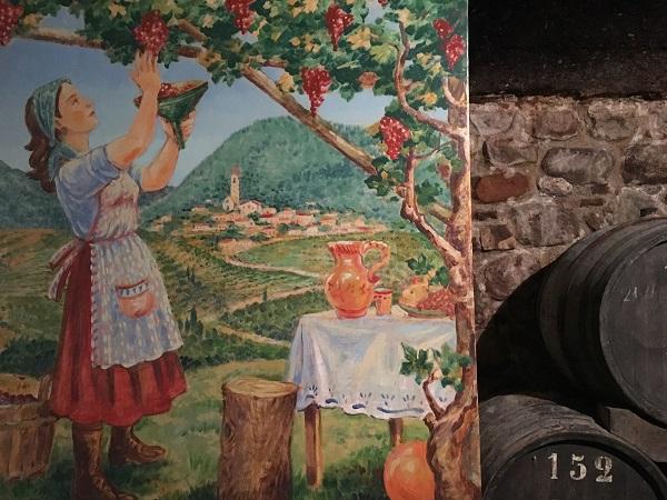 Caneve-Aperte-Val-di-Cembra (19)