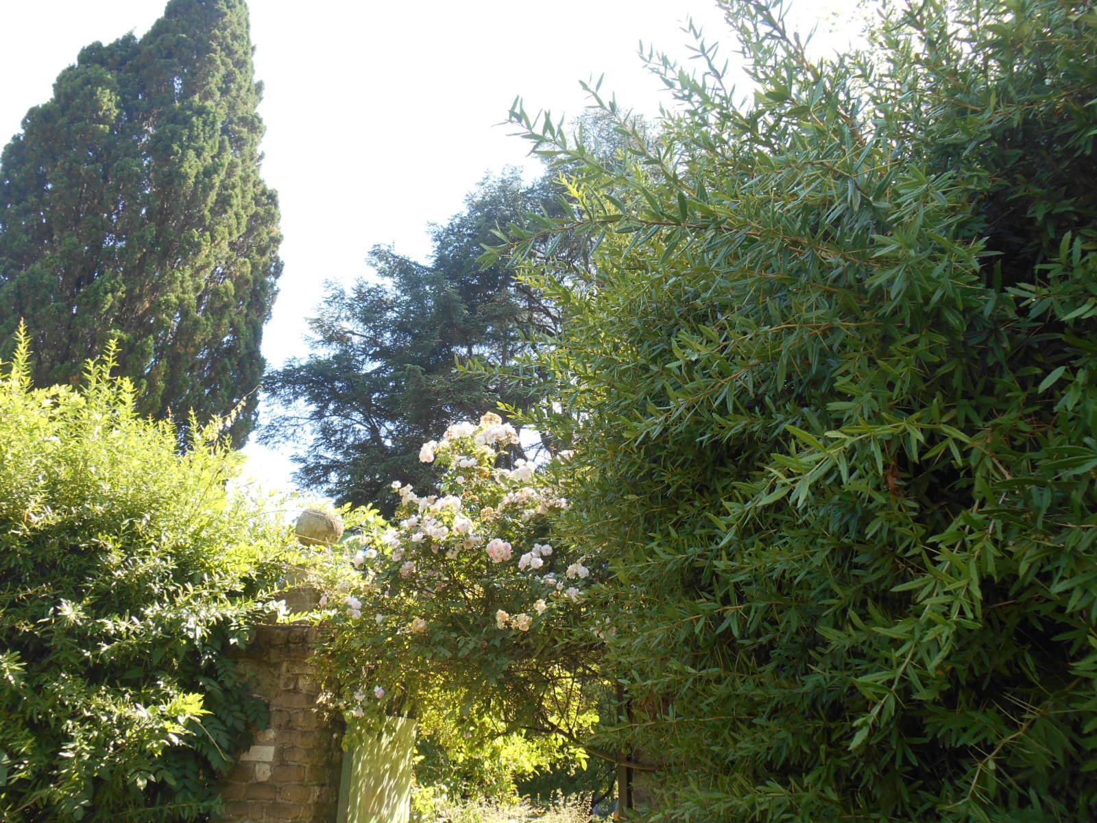 Giardino-La-Ninfa-Lazio-tuin-6