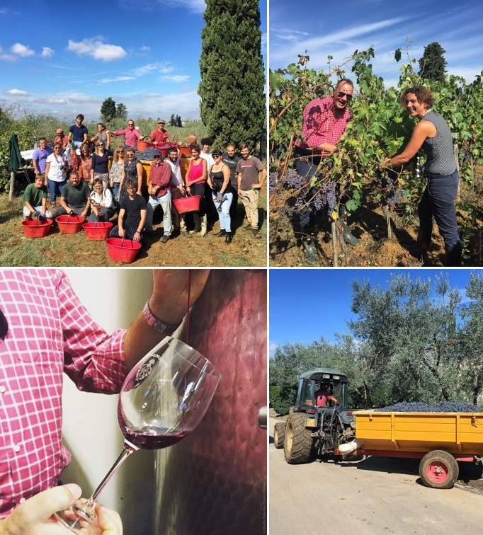 Lost_in_Florence_Nardia_Plumridge_Wine_Harvest-17