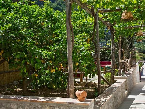 capri-wine-hotel-tuin-2