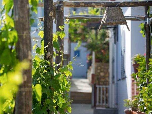 capri-wine-hotel-tuin-5