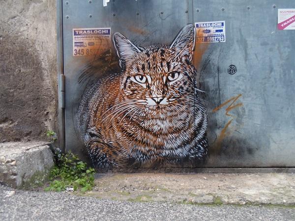 c215-street-art-rome-11