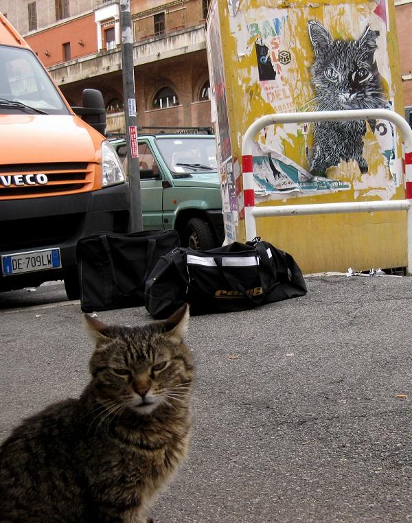 c215-street-art-rome-12