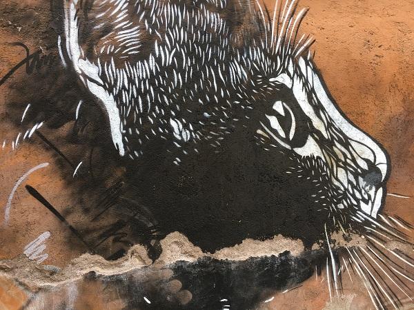 c215-torpignattara-rome-street-art-2