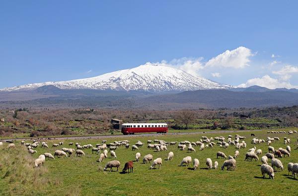 circumetnea-etna-sicilie-trein-2