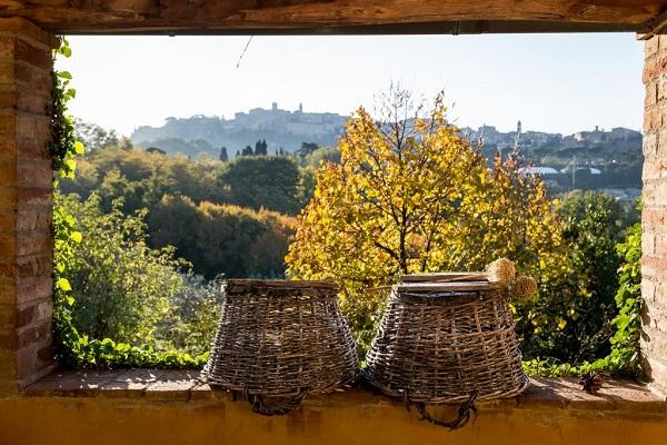fattoria-san-martino-montepulciano-agriturismo-toscane-22