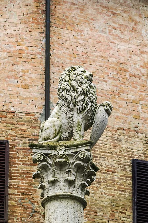montepulciano-leeuw-marzocco