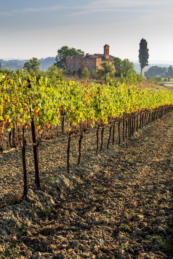 montepulciano-strada-vino-nobile-wijnroute-5