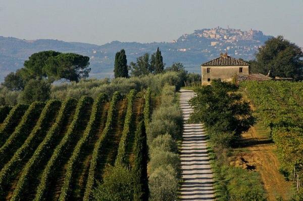 montepulciano-strada-vino-nobile-wijnroute