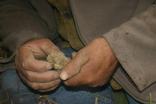 truffels-zoeken-piemonte-rik-rensen-3