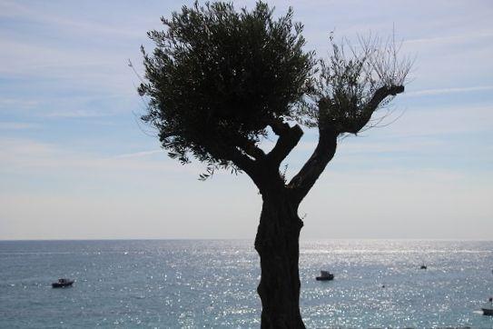vespa-tocht-verrassend-eiland-ischia-19