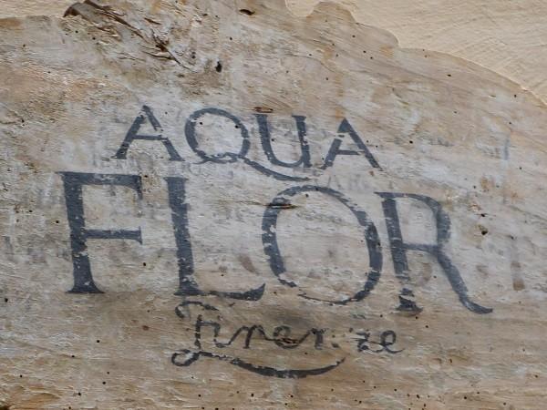 Aquaflor-Florence (2)