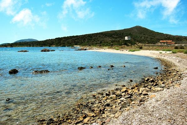 Asinara (2)
