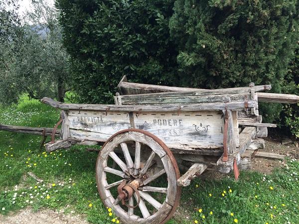 Azienda-Agricola-Frascole-Toscane (7)