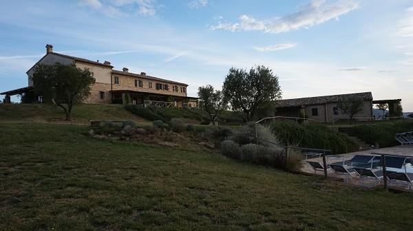 Azienda Mastrocola_2