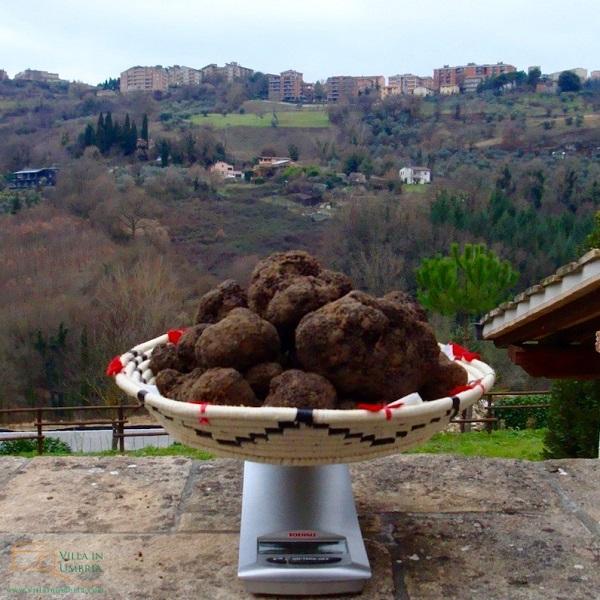 B&B-Il-Tartufo-Perugia-truffel-1