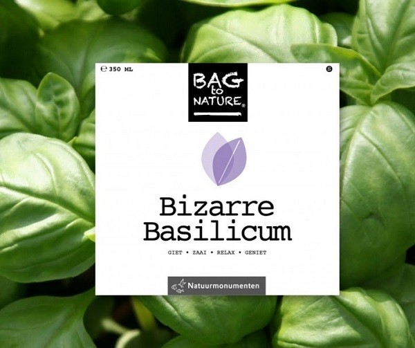 Bag-to-Nature-Basilicum-2