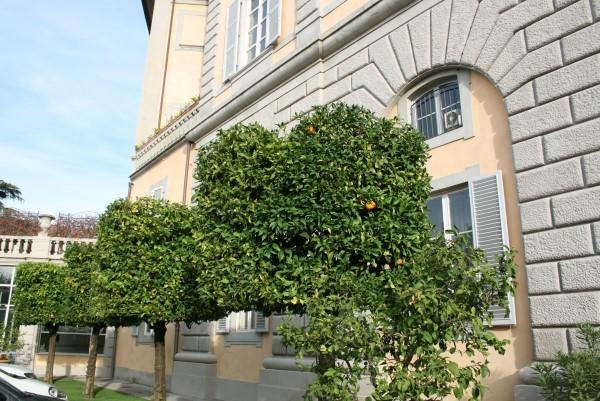 Bagni-di-Pisa-Palace (2)