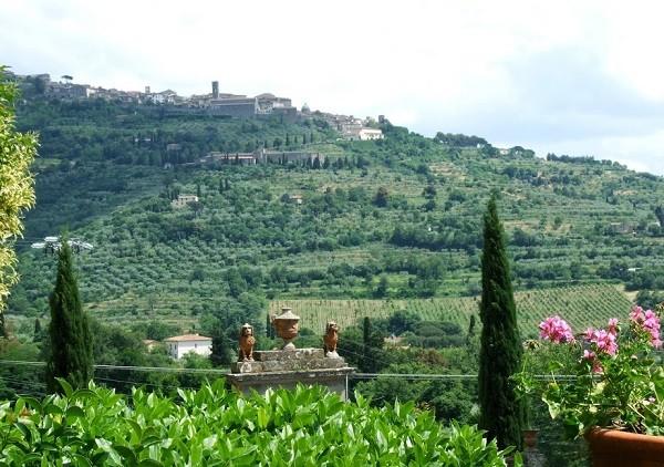 Baracchi-wijn-Cortona-Toscane (3)