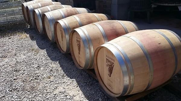 Baracchi-wijn-Cortona-Toscane (4)