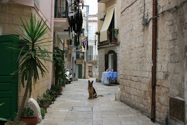 Bari-Puglia (18)