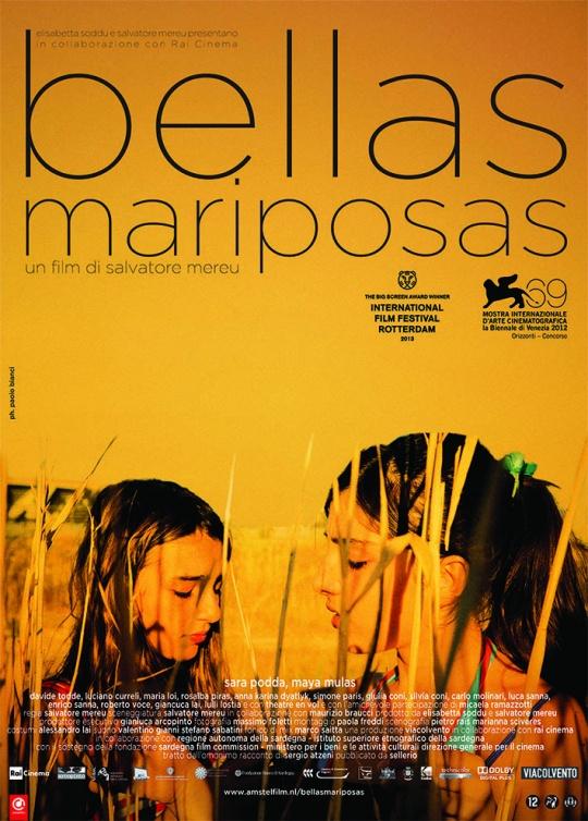Bellas-Mariposas-poster