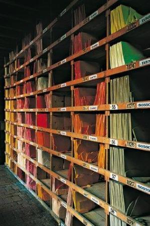 Biblioteca Orsoni