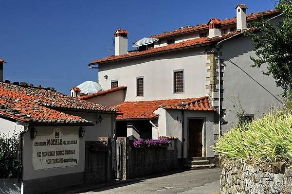 Borgo-Mocale-Arezzo-Toscane (2)