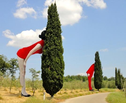 Borgo d'Arte Contemporanea (1)