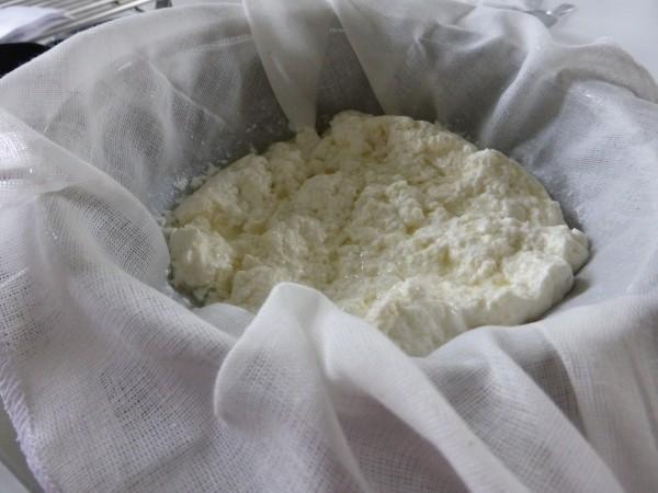 Boska-zelf-mozzarella-maken (23)