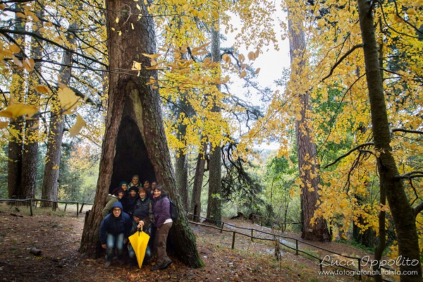 Calabrië-herfst-Italian-Storytellers (13)
