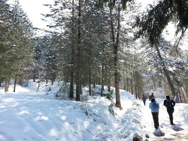 Calabrië-winter-sneeuw-Italian-Storytellers (2)