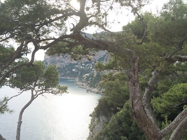 Capri-Via-Tragara-wandelen (15)