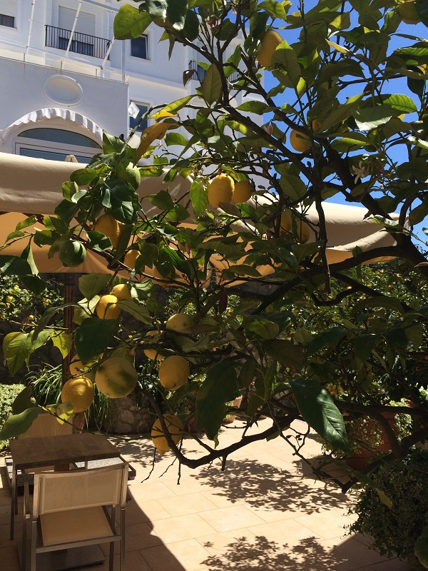 Capri-hotel (4)