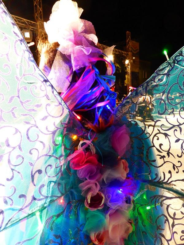 Carneval-Manfredonia-Puglia (21)
