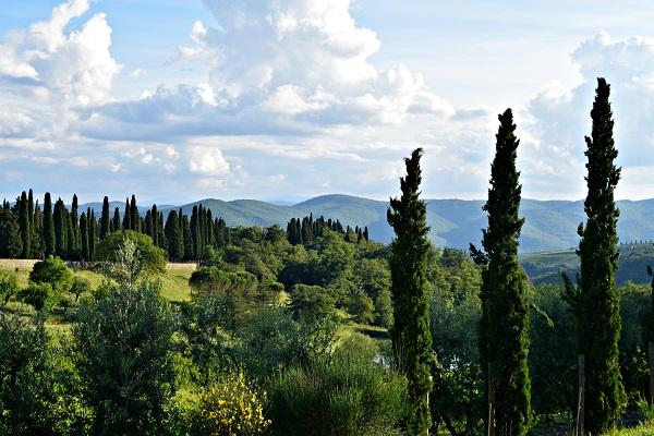 Castello-Albola-Chianti (2a) (1)