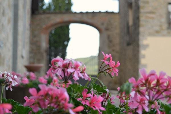 Castello-Albola-Chianti (2a) (4)