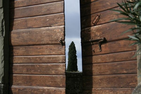 Castello-Albola-Chianti-tuin