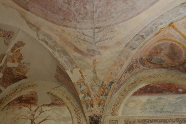 Castello Malaspina (23)