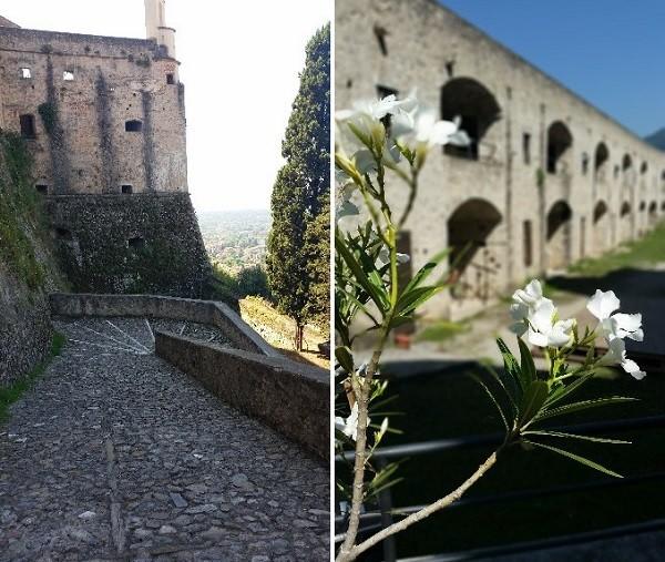 Castello Malaspina (39)